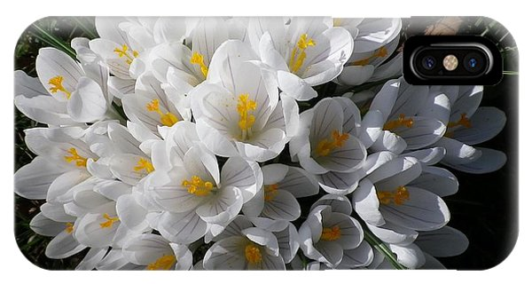 White Crocuses IPhone Case