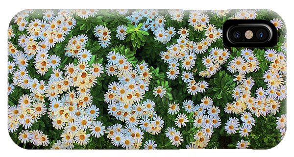 IPhone Case featuring the photograph White Daisy Bush by Roger Bester