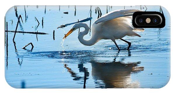 Horicon Marsh iPhone Case - White Egret At Horicon Marsh Wisconsin by Steve Gadomski