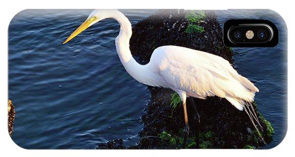White Egret At Sunrise - Barnegat Bay Nj  IPhone Case