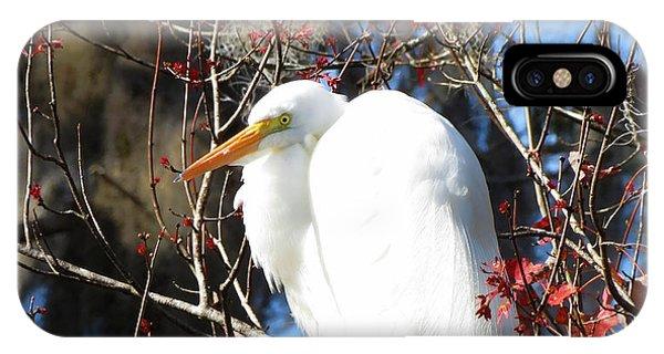 White Egret Bird IPhone Case