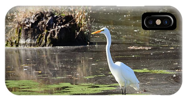 White Egret In The Shallows IPhone Case