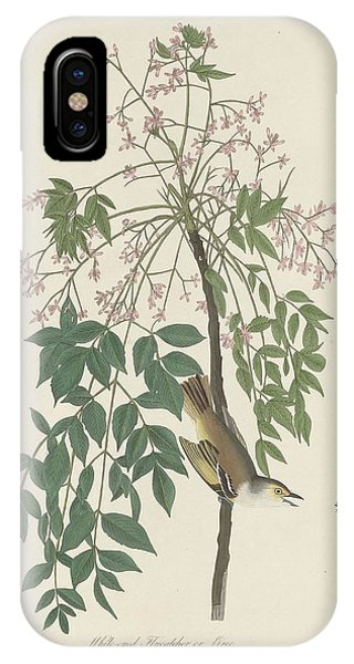 White-eyed Flycatcher IPhone Case