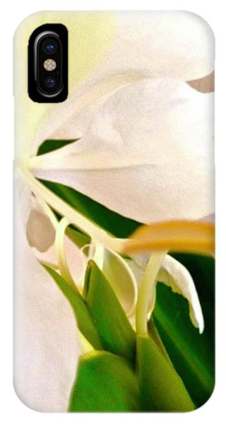 White Ginger Close Up Abstract IPhone Case