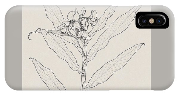 IPhone Case featuring the drawing White Ginger by Judith Kunzle