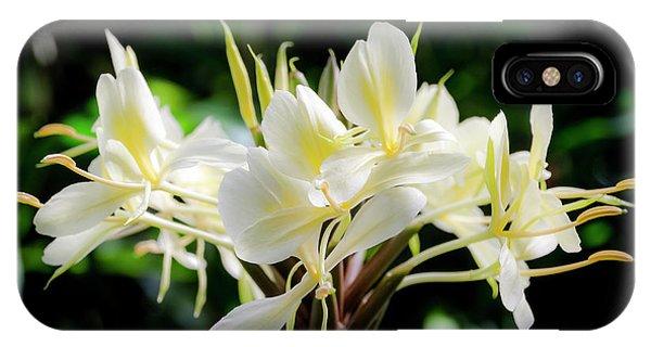 White Hawaiian Flowers IPhone Case