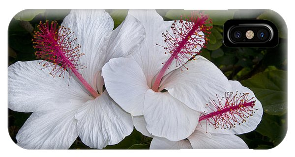 White Hibiscus Trio IPhone Case