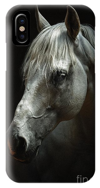 White Horse Portrait IPhone Case