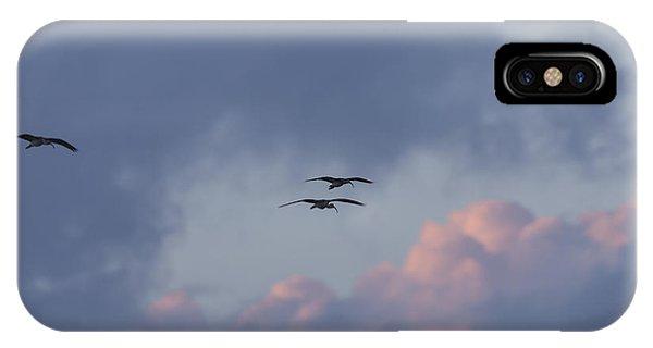 White Ibis In Flight At Sunset IPhone Case