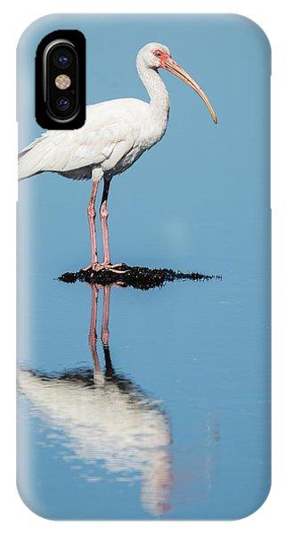 White Ibis Reflection IPhone Case