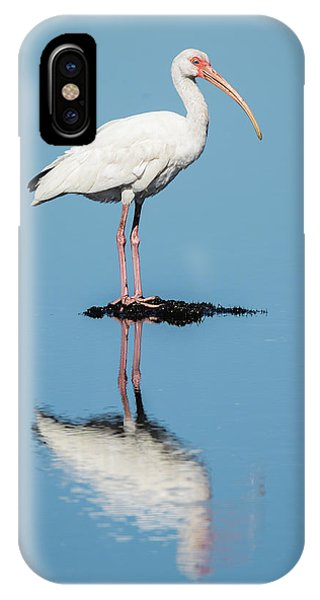 White Ibis Reflection IPhone Case