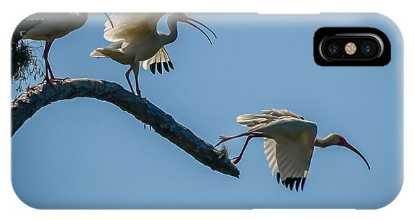 White Ibis Takeoff IPhone Case