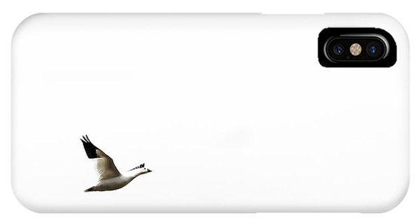 White In Flight IPhone Case