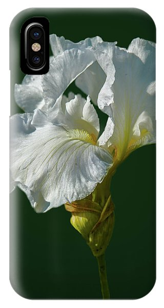 White Iris On Dark Green #g0 IPhone Case