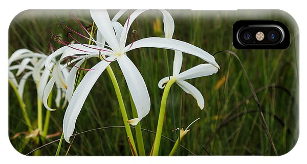 White Lilies In Bloom IPhone Case
