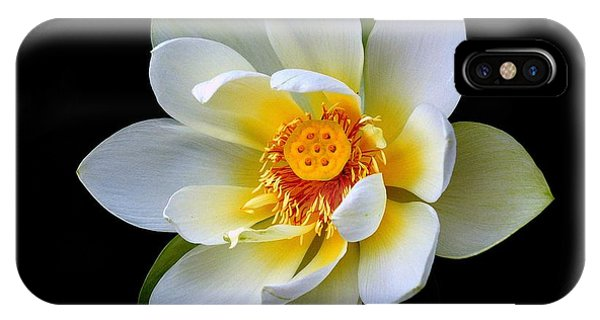 White Lotus Flower IPhone Case