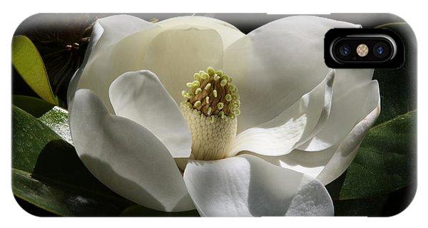 White Magnolia Flower IPhone Case