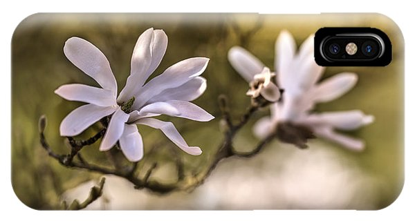 IPhone Case featuring the photograph White Magnolia by Jaroslaw Blaminsky