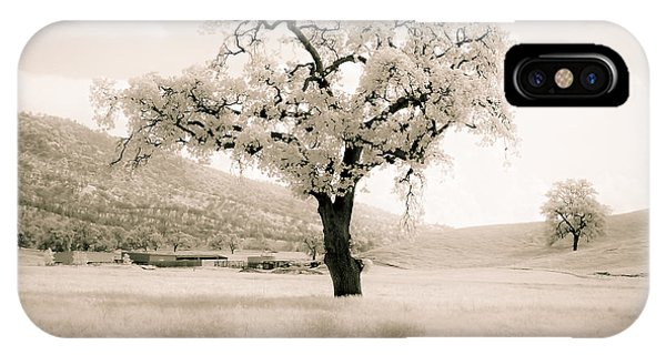 White Oak IPhone Case