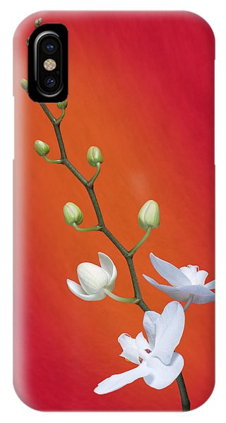 Orchid iPhone Case - White Orchid Buds On Red by Tom Mc Nemar