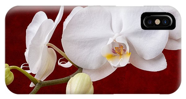 Orchid iPhone X Case - White Orchid Closeup by Tom Mc Nemar