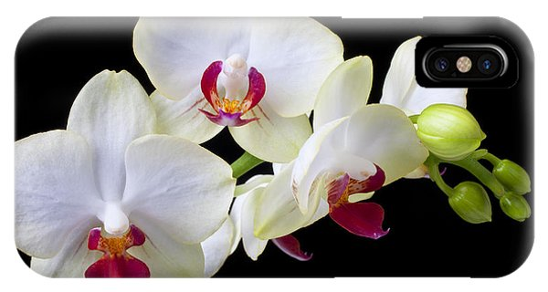 Orchid iPhone Case - White Orchids by Garry Gay