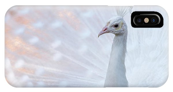 IPhone Case featuring the photograph White Peacock by Sebastian Musial