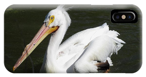 White Pelican Phone Case by George Jones