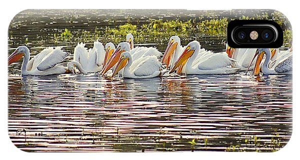 White Pelican Parade IPhone Case