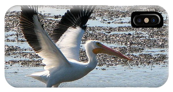 White Pelican Takes Wing IPhone Case