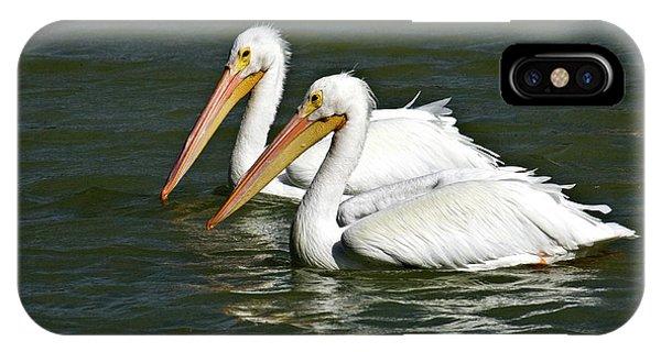 White Pelicans Phone Case by Rodney Cammauf