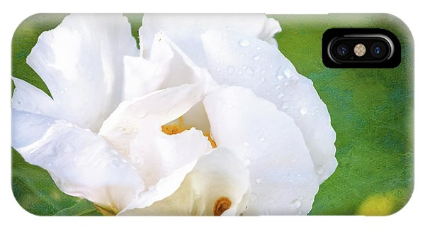 White Peony After The Rain IPhone Case