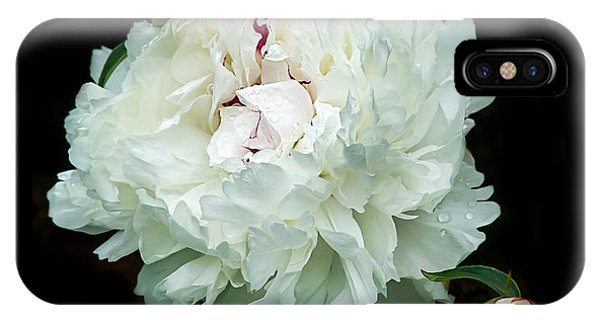 White Peony And Buds IPhone Case