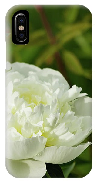 IPhone Case featuring the photograph White Peony by Cristina Stefan