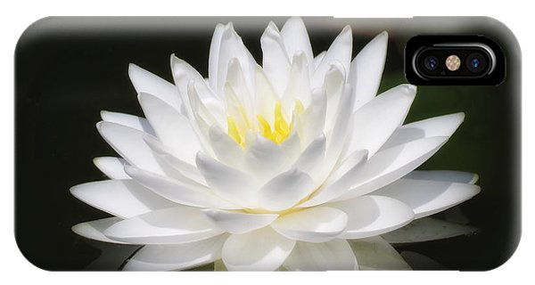 White Petals Glow - Water Lily IPhone Case