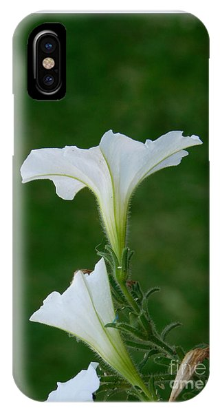 White Petunia Blossoms IPhone Case
