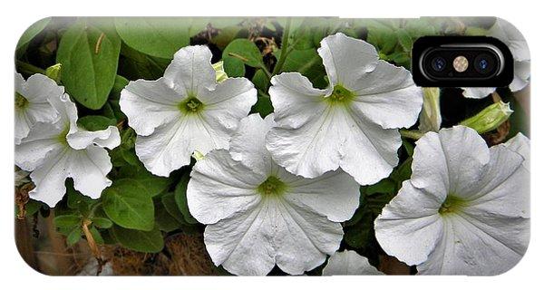 White Petunias IPhone Case
