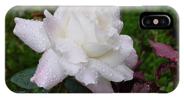 White Rose In Rain IPhone Case