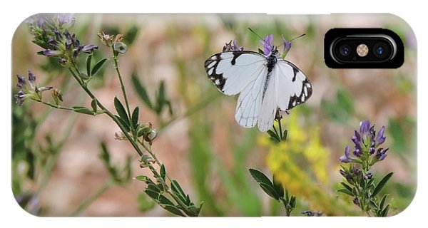 White-skipper On Lupine IPhone Case