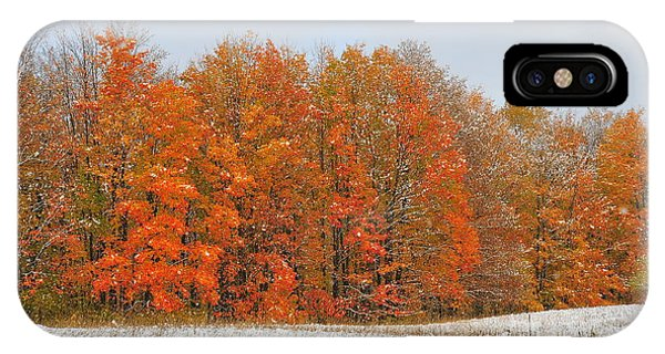 White Snow In Autumn IPhone Case