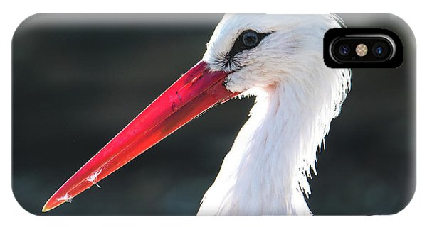 White Stork IPhone Case