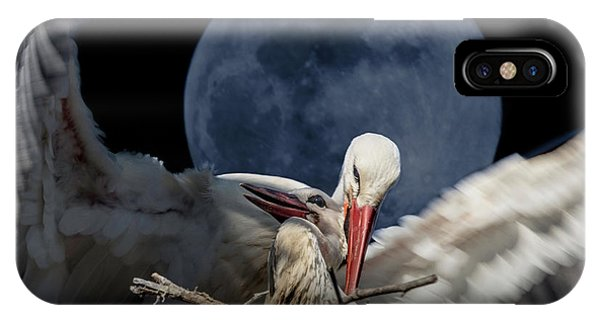 White Storks Of Fagagna With Full Moon IPhone Case