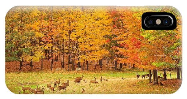 White Tail Deer Herd IPhone Case