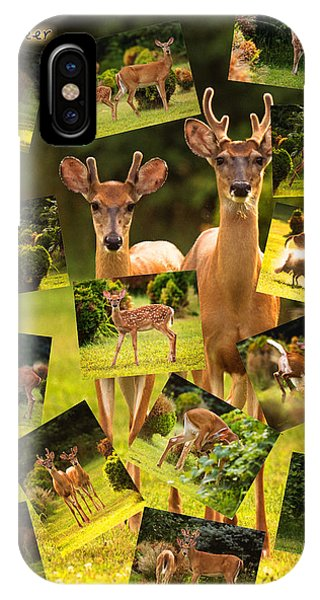 IPhone Case featuring the photograph White-tailed Collage by Angel Cher