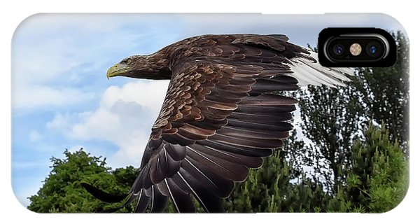 White Tailed Eagle IPhone Case