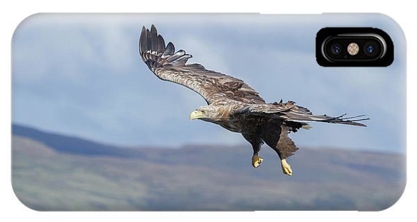 White-tailed Eagle On Mull IPhone Case