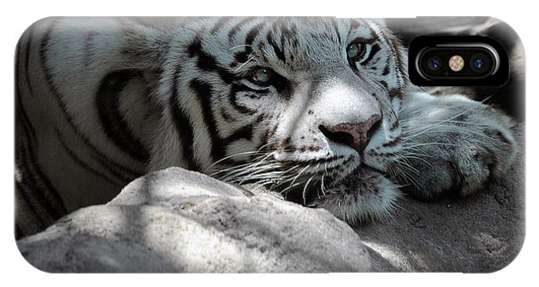 White Tiger Contiplation IPhone Case