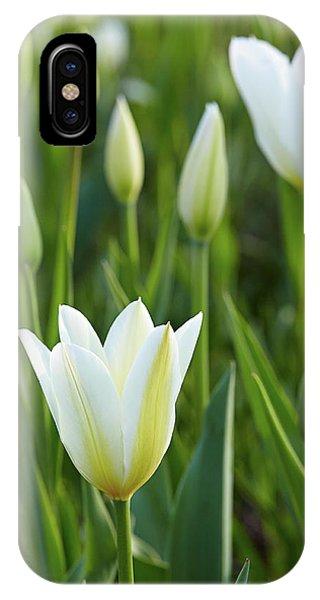 White Tulip IPhone Case