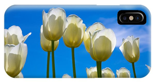 White Tulips  IPhone Case