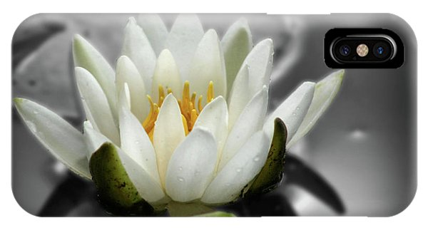 White Water Lily Black And White IPhone Case